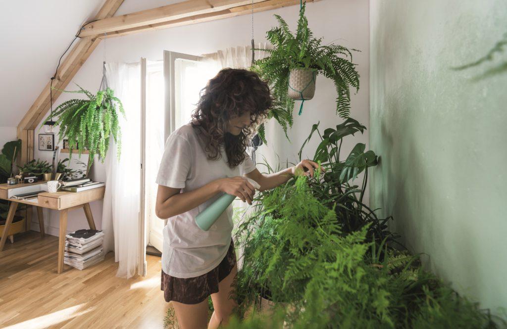 mieszkanie w stylu jungle